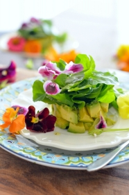 Avocado Watercress Salad with Edible Flowers