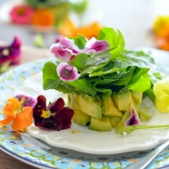 Avocado Watercress Salad with Edible Flowers
